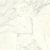 Calacatta Honed 12x12 Marble