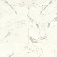 Calacatta Polished 12x24 Marble