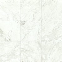 Calacatta Polished 18x18 Marble