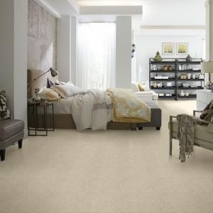 Carpet Tigard