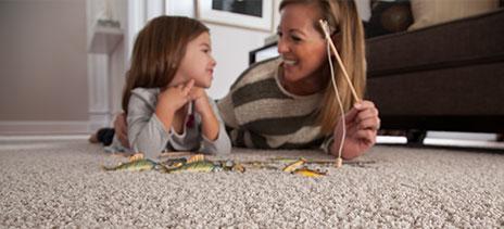 Mohawk Carpet Feature