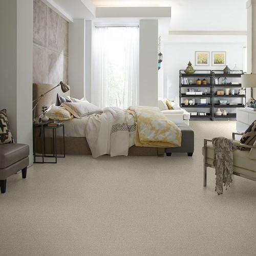 Shaw Carpet Category Image