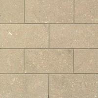 Sea Grass Limestone 3x6