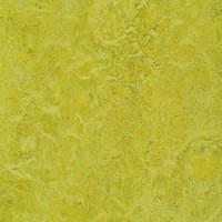 Marmoleum Linoleum Discount Prices Installation