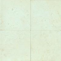 Blanco Limestone Honed 24x24