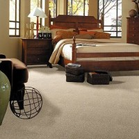 Sale Carpet